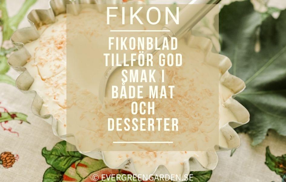 Fikonbladsglass fikonbladslindad lax