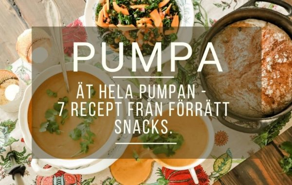 Pumpa 7 recept från förrätt till snacks