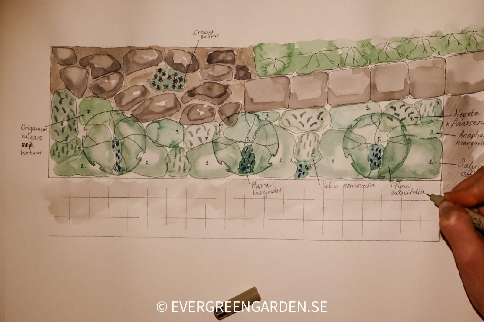 Trädgårdsritning ätbar trädgårdsdesign