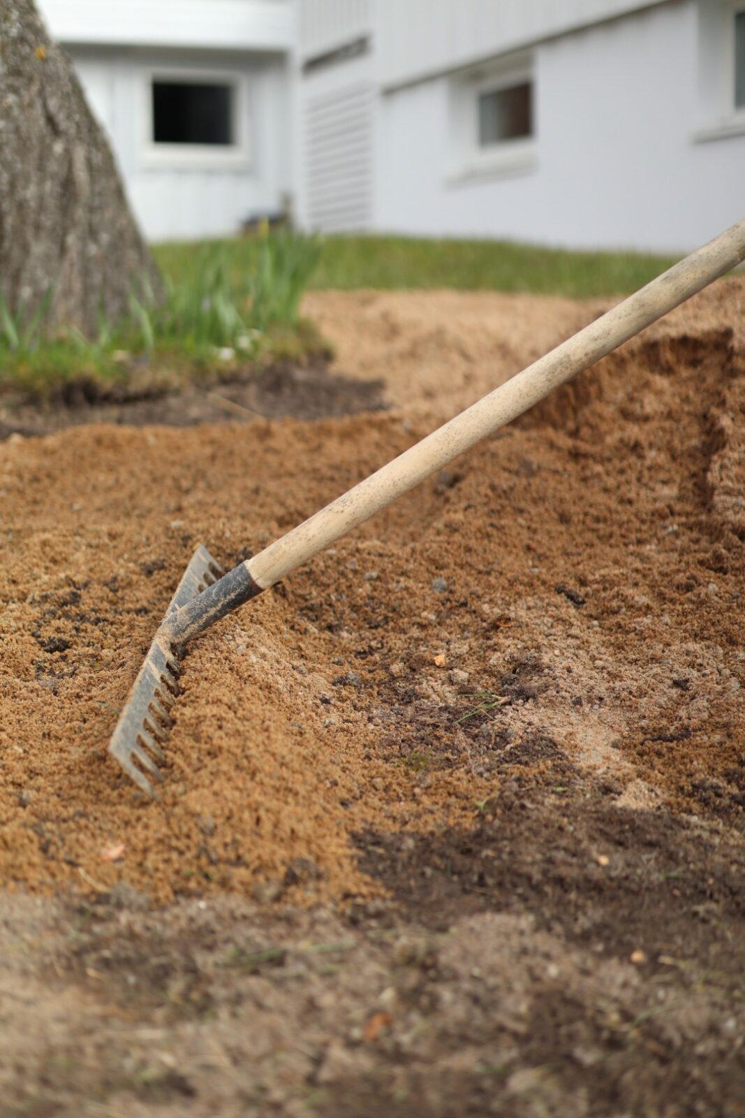 sandblandad jord till äng